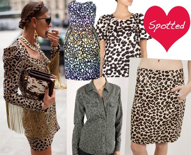 Leopard3_large
