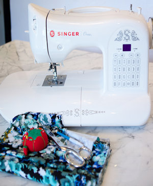 Blognoserger_medium