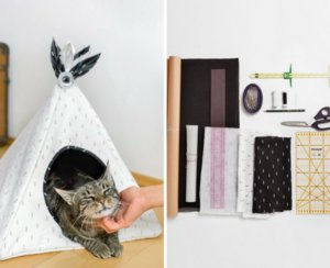 Cat_house_main_medium