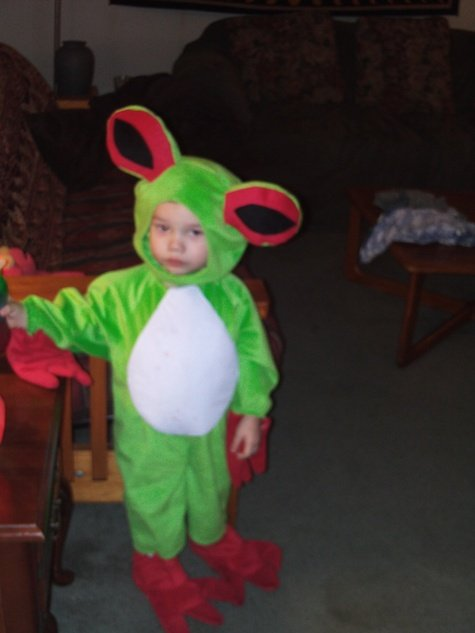 Tree_frog_fullscreen