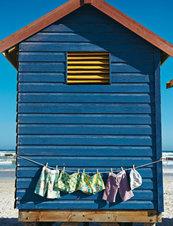 141c_shorts_listing