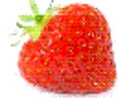 Strawberry_show