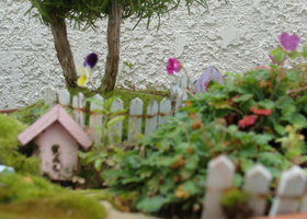 Jaden_s_fairy_garden_show