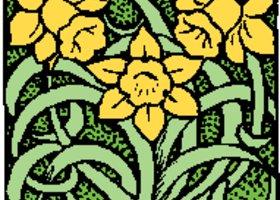 Daffodils_show