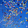 Balloons_large