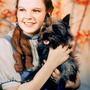 34972-17714-judy-garland_large