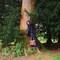 14_arboretum_1_thumb