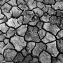 Cracked-earth_large