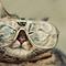 Hep_cat_thumb