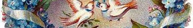 Birds_and_blue_flowers_show
