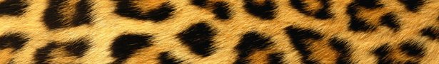Leopard_print_background-1440x900_show