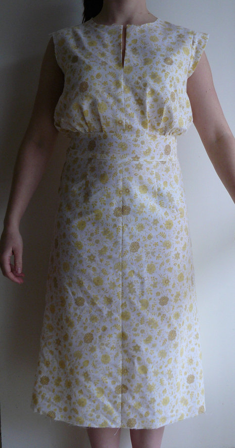 Dress_muslin_1_large