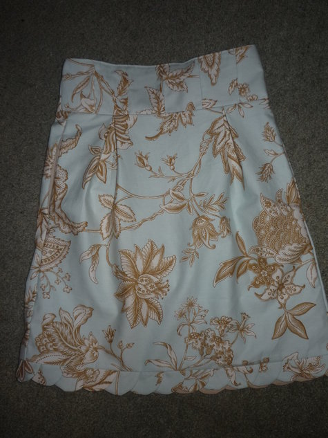 Skirt_002_large