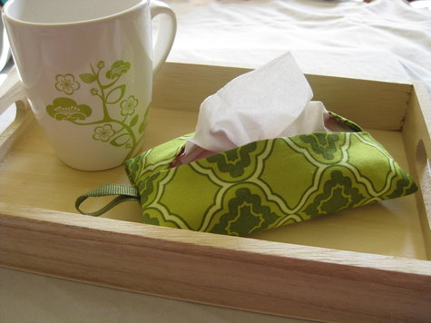 Tissue_cozy_final_2_large