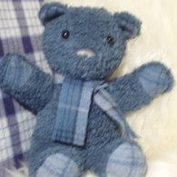 Teddy_listing
