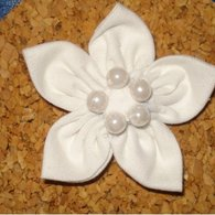 Cotton_flower_listing