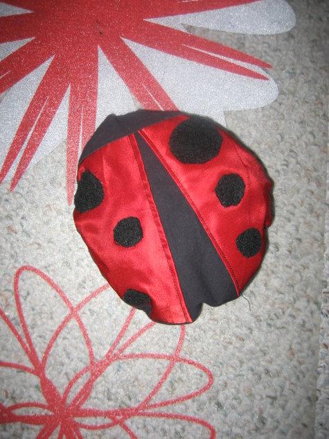 Ladybug_002_large