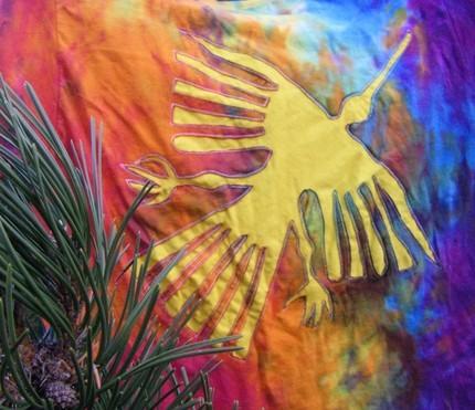 Rahummingbird_large