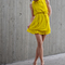 Yellow_front_grid