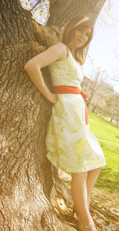 Spring_dress_2_large