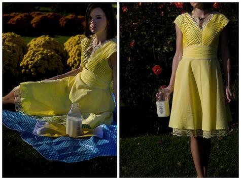 New_flickr_dresses4_large