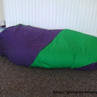 Completed_bean_bag_listing