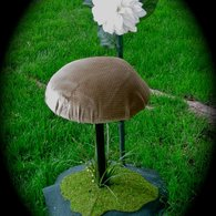 Mushroom_chair_listing
