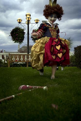 Queen Of Hearts And Alice In Wonderland Costume Set