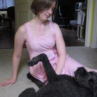 Dress_dog_listing
