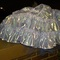 Crinoline_grid