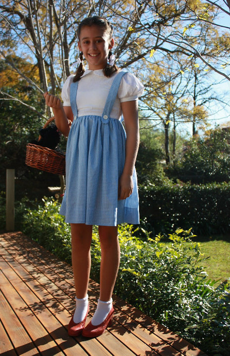 Diy Dorothy Costume Ideas Diy Campbellandkellarteam