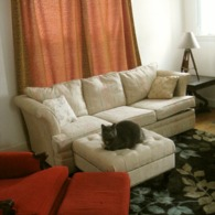 Diyclipringcurtains_livingroom_listing