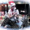 Leopard_xmas_grid