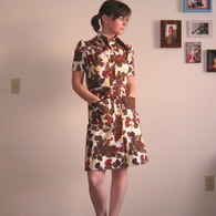 Theshirtdress_1__listing