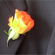 Rose_20a_20la_20boutonniere_listing