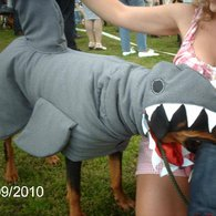 Roxy_shark_xx_listing