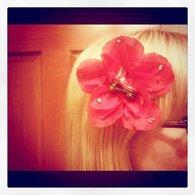 Derby_flower_listing