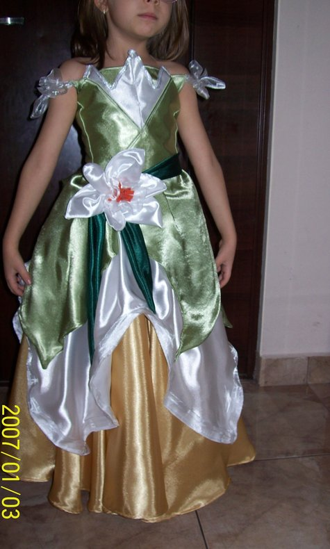 Princess_tiana_dress_3_large