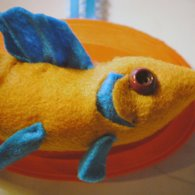 Yellow_fish_close_up_listing