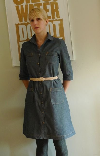 Stern_shirt_dress_large