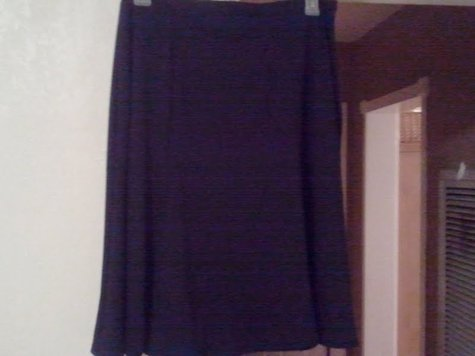 Nl_skirt_large