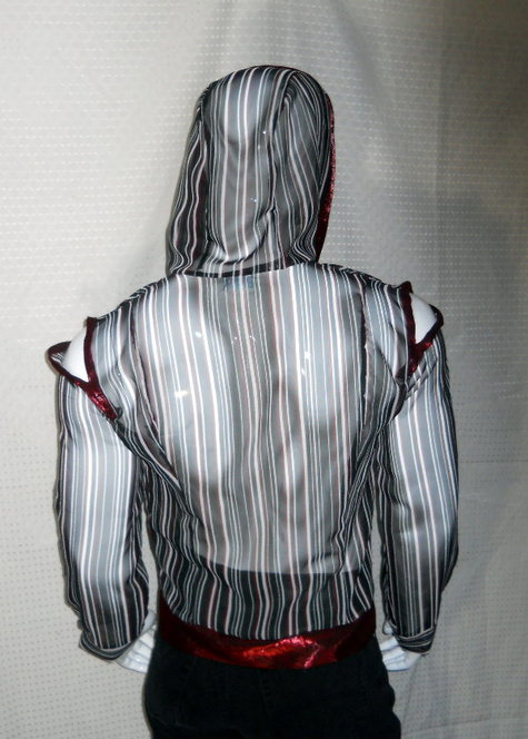 Sheer_striped_hoodie_back_view_large