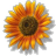 Sunflower_listing