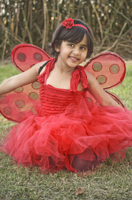 Ladybug_costume_large