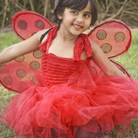 Ladybug_costume_listing