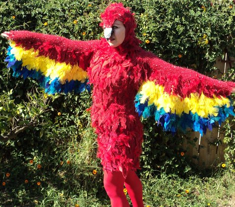 Polly_parrot_costume_4_2012_large