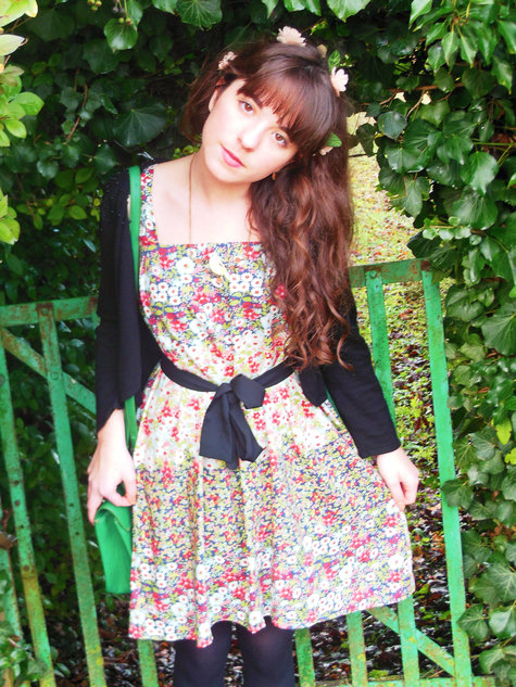 Fairy_dress_5__large