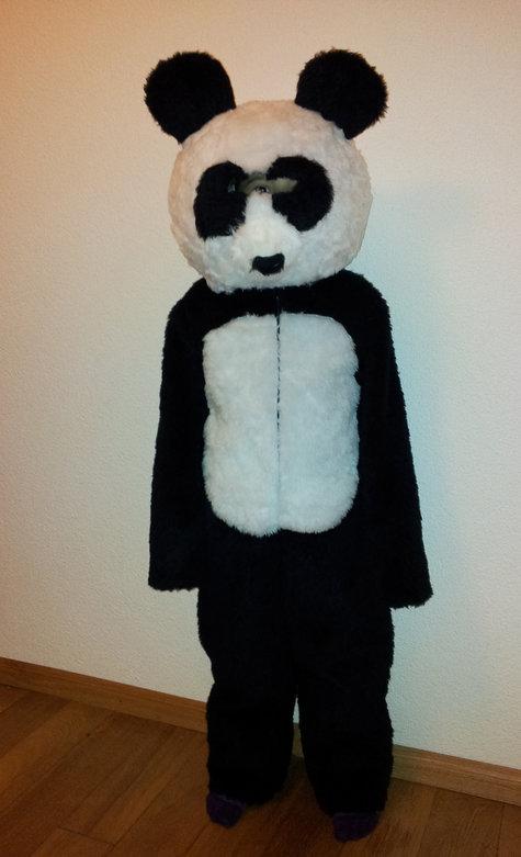 Panda_large