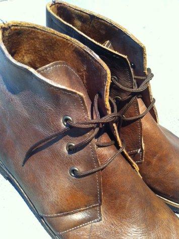 Shoe2_large