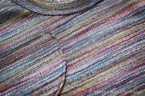 Sweetlittlechickadee_julib_briarsweater_9_march2013_large